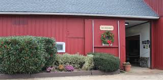 the red barn a full service equestrian center long island