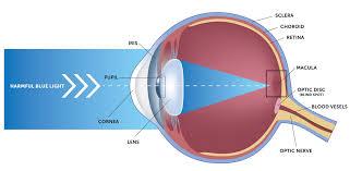 eye pain from light pain in the back of eye iris blue light filter for eye