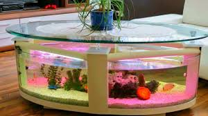 Creative Home by 40 Aquarium Fish Ideas 2017 Creative Home Design Fish Tank And
