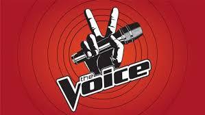 The Voice Season 4 Blind Auditions The Voice Recap 4 1 13 Season 4