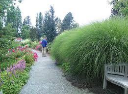 Botanical Garden Bellevue Bellevue Botanical Garden Picture Of Bellevue Botanical Garden