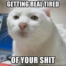 Getting Real Tired Of Your Bullshit Meme Generator - getting real tired of your shit serious cat 2 meme generator