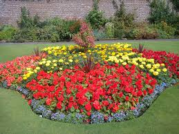 bedroom red and yellow flower garden on flower bed ideas good