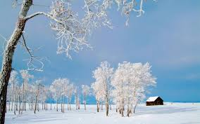 Photo Collection Winter Nature Desktop Wallpaper