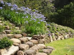 Rock Garden Wall Rock Wall Garden Gardening Design