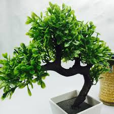 artificial bonsai tree welcoming plant flower green plant