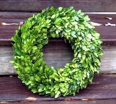 preserved real boxwood wreath 14 inch indoor wreath wall decor