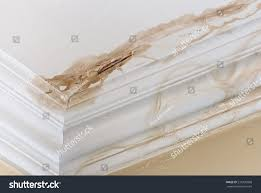 peeling paint on interior ceiling result stock photo 231995860