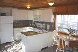 beechwood kitchen cabinets beech wood kitchen cabinets exitallergy com