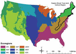 united states map with states on it map of the conterminous united states showing the nine ecoregions