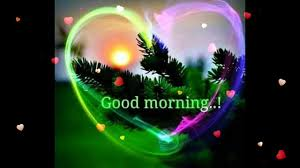 good lighting for video good morning wishes greetings e card good morning whatsapp video