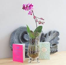 Footed Glass Vase Decorative Ideas For Hurricane Vase Home Decorations