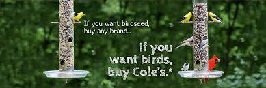home cole u0027s wild bird feed