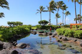 poipu kauai family travel guide