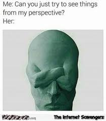 Perspective Meme - when you ask her to see things from your perspective funny meme