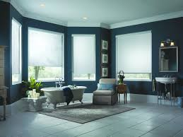 ventura and santa barbara solar screens and window treatments