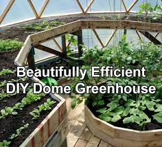 Greenhouses For Backyard A Beautifully Efficient Diy Dome Greenhouse Off Grid World