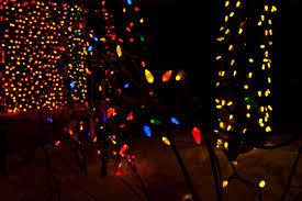 Zoo Lights Salt Lake City by December 2010 Christopher Martin Photography