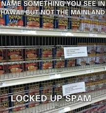 Hawaiian Memes - 17 downright funny memes you ll only get if you re from hawaii