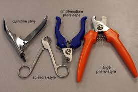 how to cut the claws of your dog with dog nail clipper samantha