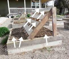 Advantage Of Raised Garden Beds - 30 raised garden bed ideas raising