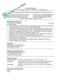 Mis Executive Sample Resume Help Writing Chemistry Homework Resume For General Manager Sales