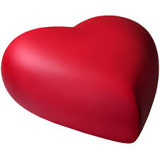 heart urn brass heart dog urn scarlet