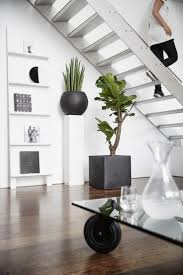 indoor modern planters 23 best capi tutch images on pinterest dutch indoor and planters