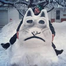 Snowstorm Meme - grumpy cat meme becomes snow art mocks kansas city s latest