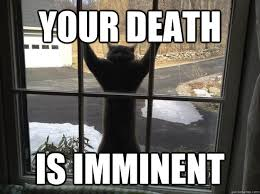 Memes About Death - your death is imminent attack cat quickmeme