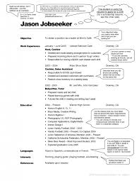 it professional resume examples best direct support professional