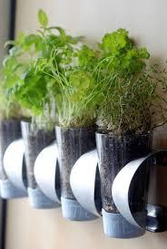 hanging planters indoor contemporary emilyevanseerdmans com