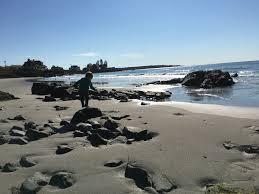 kennebunk beaches an insider u0027s guide inn at english meadows