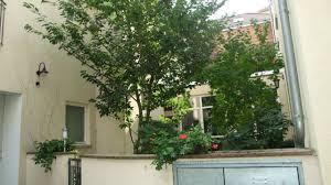 Cup Vitalis Bad Kissingen Allee Hotel Garni In Bad Kissingen U2022 Holidaycheck Bayern Deutschland