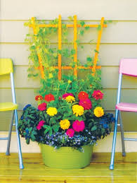 mix and match flowers vegetables for a trendy container garden