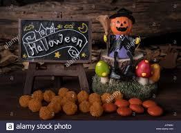 halloween trees pumpkins background pumpkin head jack jack o lantern in witch suit sitting on a tree