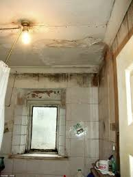 Mould Bedroom Ceiling Squalid Conditions Of Student Digs And Hell Hole Homes Is Revealed