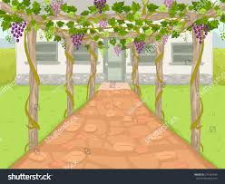 illustration wine estate path covered by stock vector 274181945
