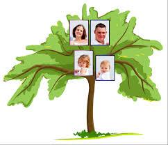 family tree for kids familytreeforkids