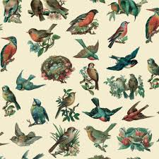 bird wrapping paper birds wrapping paper elfie children s clothes