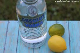 Southern Comfort Drink Review Spirits Reviews Archives Page 2 Of 8