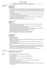 resume templates word accountant trailers plus peterborough vp marketing resume sles velvet jobs