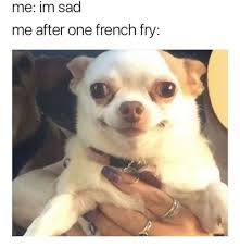 What Is Meme In French - 25 best memes about french fry french fry memes
