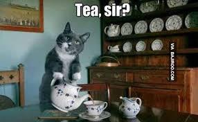 Tea Meme - tea sir funny meme bajiroo com