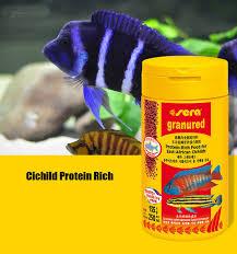 alimentazione ricca di proteine dieta ricca di proteine vegetali africa orientale cichilds