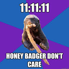 Honeybadger Meme - honey badger dont care memes quickmeme