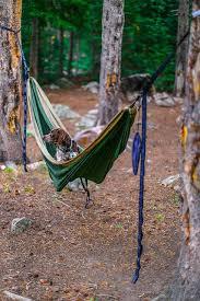best 25 dog hammock ideas on pinterest dog hammock for car