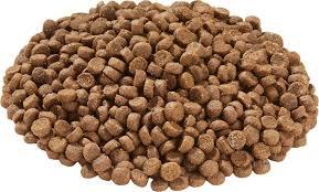 zupreem grain free diet ferret food 4 lb bag chewy com