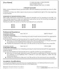 Best 25 Project Manager Resume by It Resume Templates Professional Resume Template Cv Template