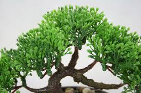 Artificial Plant Decoration Home Bonsai Tree In Oval Pot Artificial Plant Decoration For Office And